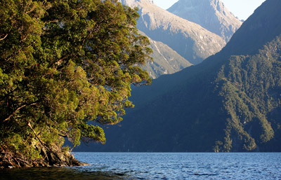 New Zealand: Milford Sound